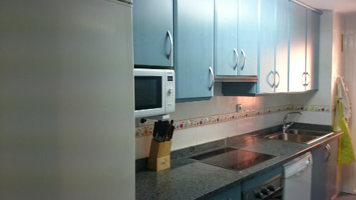 Flat in Malaga - Vacation, holiday rental ad # 56367 Picture #7