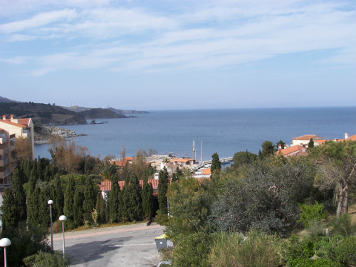 Flat Banyuls Sur Mer - 5 people - holiday home  #56401