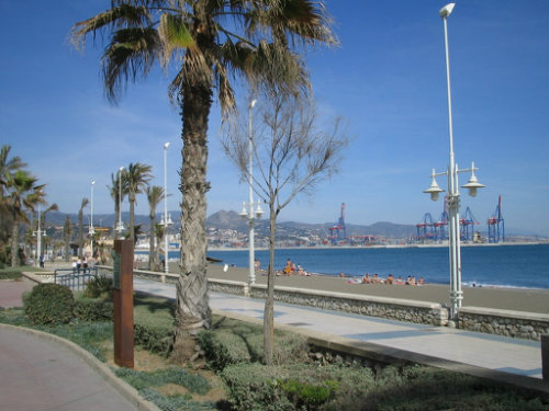 Flat in Malaga for rent for  6 people - rental ad #56488