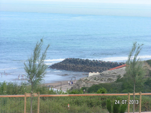 Flat in Biarritz - Vacation, holiday rental ad # 56521 Picture #0