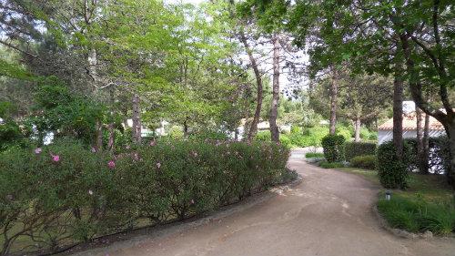 Huis Saint Jean De Monts - 6 personen - Vakantiewoning  no 56566