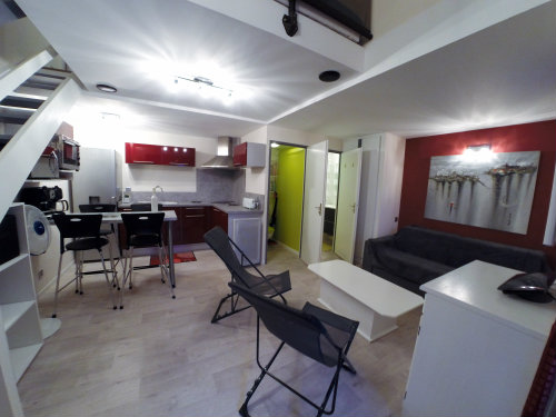 Flat St Cyprien - 4 people - holiday home  #56608
