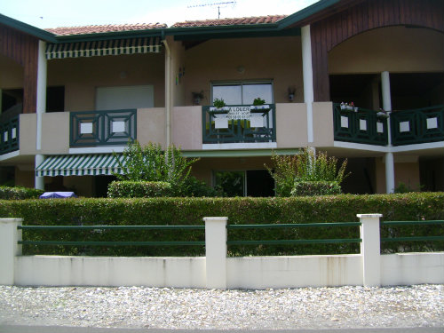 Flat Mimizan  - 6 people - holiday home  #56653