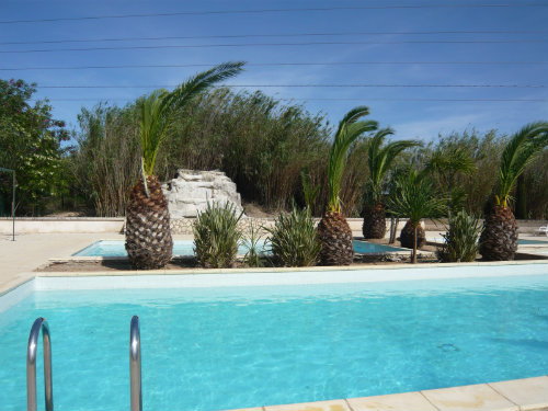 Maison Arles - 6 personnes - location vacances  n°56690