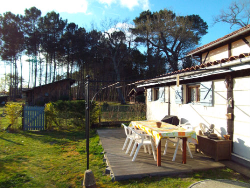 Gite Onesse Laharie - 2 people - holiday home  #56707
