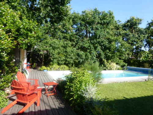 House Le Teich - 8 people - holiday home  #56847