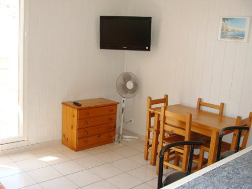Flat in Saint-Cyprien - Vacation, holiday rental ad # 56931 Picture #4