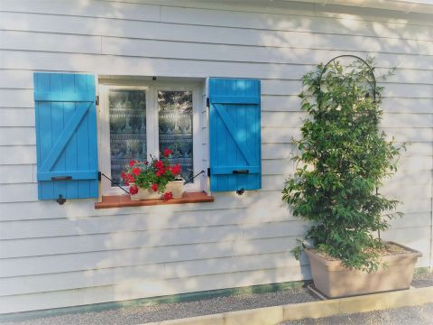 Gite in Beauvoir sur Mer - Vacation, holiday rental ad # 56948 Picture #5