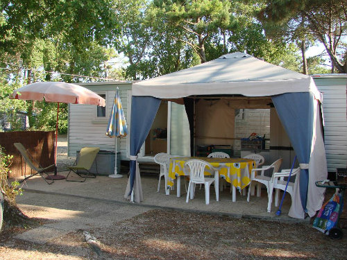 Mobil-home Le Bois Plage En Ré - 4 personnes - location vacances  n°56990