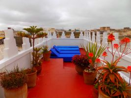 House Essaouira - 6 people - holiday home  #56613