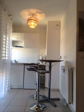 Gite in NICE - Vacation, holiday rental ad # 57040 Picture #1