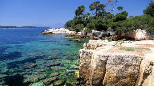 Flat in Antibes - Vacation, holiday rental ad # 57209 Picture #18