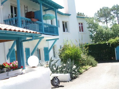 Flat in Bidart - Vacation, holiday rental ad # 57379 Picture #1