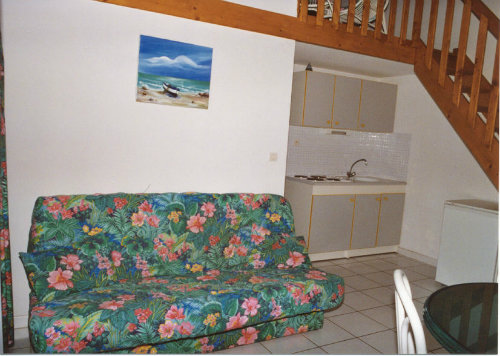 House in Vias-Plage - Vacation, holiday rental ad # 57627 Picture #3