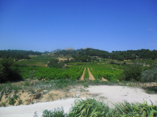 Farm in La Roque Alric - Vacation, holiday rental ad # 57694 Picture #14