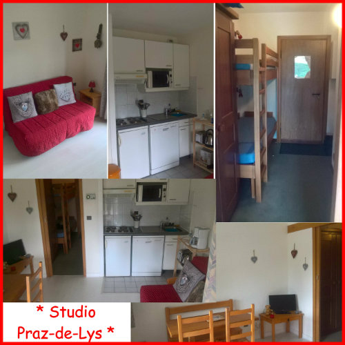 Studio in Praz-de-Lys - Vacation, holiday rental ad # 57835 Picture #2 thumbnail