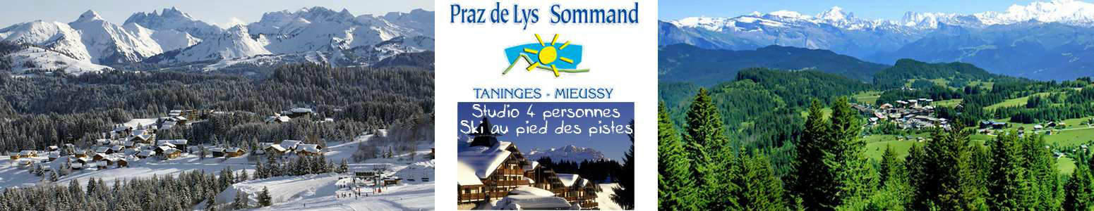 Studio Praz-de-lys - 4 people - holiday home  #57835
