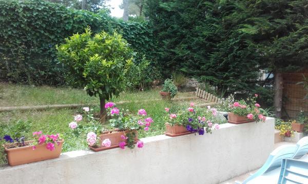 Maison Sanary Sur Mer - 4 personnes - location vacances  n°57887