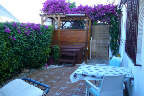 House in Torrevieja - Vacation, holiday rental ad # 58042 Picture #3