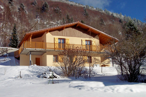 Chalet La Bresse - 10 people - holiday home  #58239