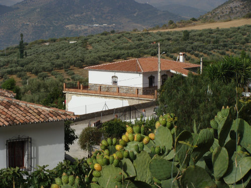 House in Periana - Vacation, holiday rental ad # 58283 Picture #2