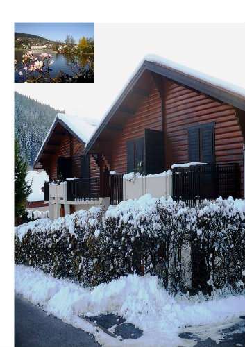 Chalet Gérardmer - 4 people - holiday home  #58349