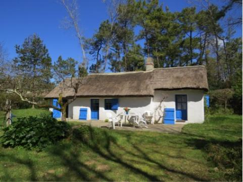 Maison Saint Jean De Monts - 6 personnes - location vacances  n°58567