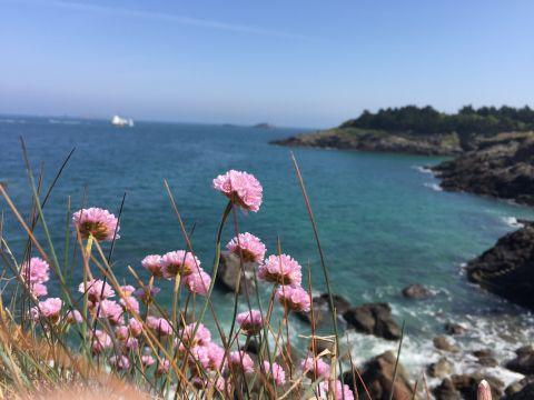 Gite Saint Lunaire - 5 Personen - Ferienwohnung N°58579