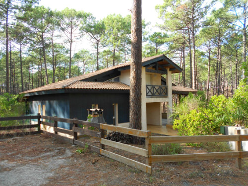 House in Carcans-Maubuisson - Vacation, holiday rental ad # 58603 Picture #1