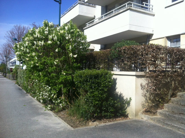 Flat in MONTEVRAIN - Vacation, holiday rental ad # 59204 Picture #1