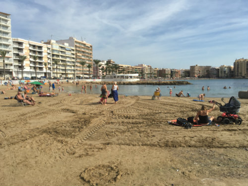 Flat in Torrevieja- costa blanca - Vacation, holiday rental ad # 59282 Picture #19