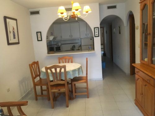 Flat in Torrevieja- costa blanca - Vacation, holiday rental ad # 59282 Picture #2