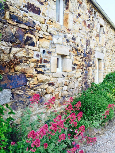 Gite Self-catering - 4 personnes - location vacances  n°59450