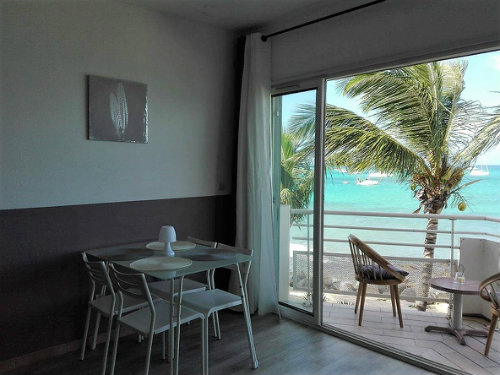 Studio in saint martin - Vacation, holiday rental ad # 59550 Picture #4
