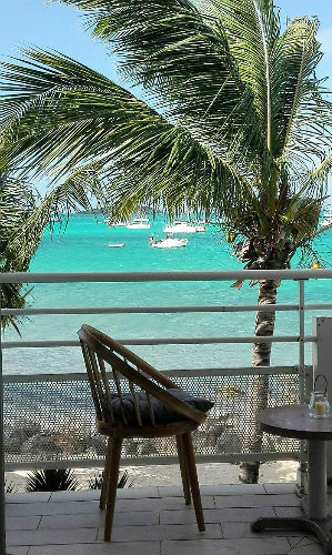 Studio 3 people Saint Martin - holiday home  #59550