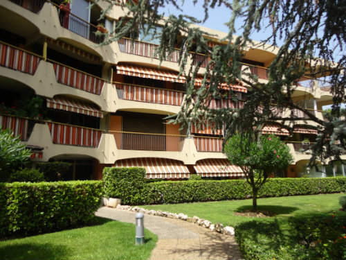 Studio Cannes - Mandelieu - 4 people - holiday home  #59619