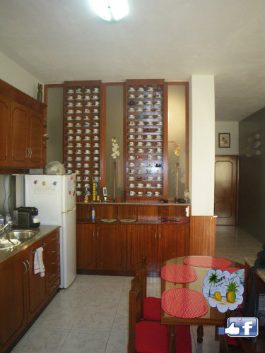 Flat in SÃo pedro da cova - Vacation, holiday rental ad # 59686 Picture #10
