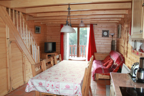Chalet La Joue Du Loup - 6 people - holiday home  #59757