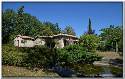 Maison Septfonds - 4 personnes - location vacances  n°60058