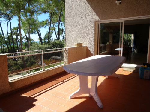 House in SAINT PALAIS SUR MER - Vacation, holiday rental ad # 60159 Picture #6