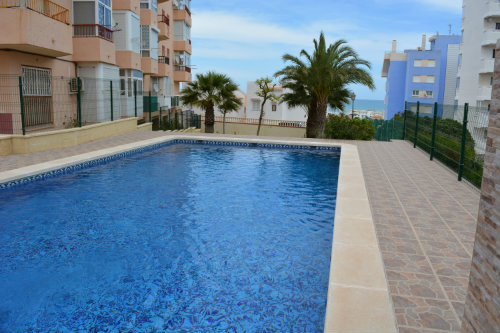 Flat in Torrevieja-La Mata - Vacation, holiday rental ad # 60191 Picture #15