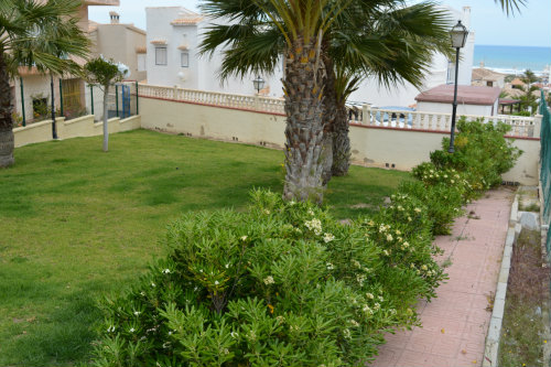 Flat in Torrevieja-La Mata - Vacation, holiday rental ad # 60191 Picture #16