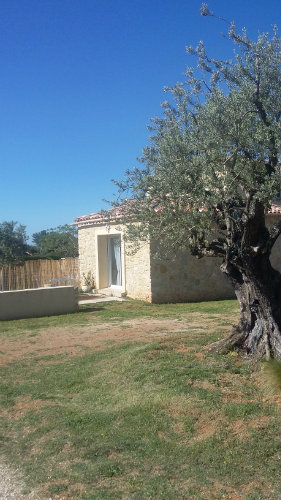 Gite Beaumes De Venise - 4 people - holiday home  #60196