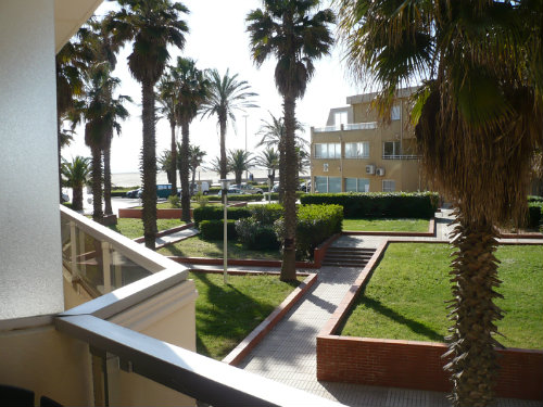 Studio Canet En Roussillon - 2 people - holiday home  #60254