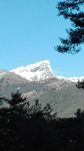 Gite 4 personen Albertacce - Vakantiewoning  no 60428