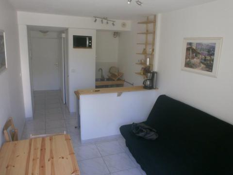 Flat 2 people Juan Les Pins - holiday home  #60692
