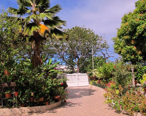 Gite à Port-louis pour  5 •   jardin