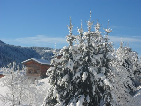 Chalet Les Gets - 10 people - holiday home  #60951