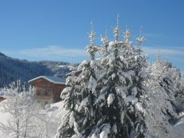 Chalet Les Gets - 5 people - holiday home  #60951
