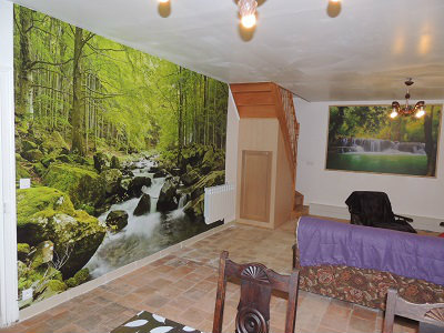 House Channay Sur Lathan - 6 people - holiday home  #61128